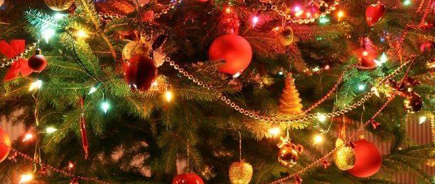 С Новым 2019 Годом и Рождеством Христовым !